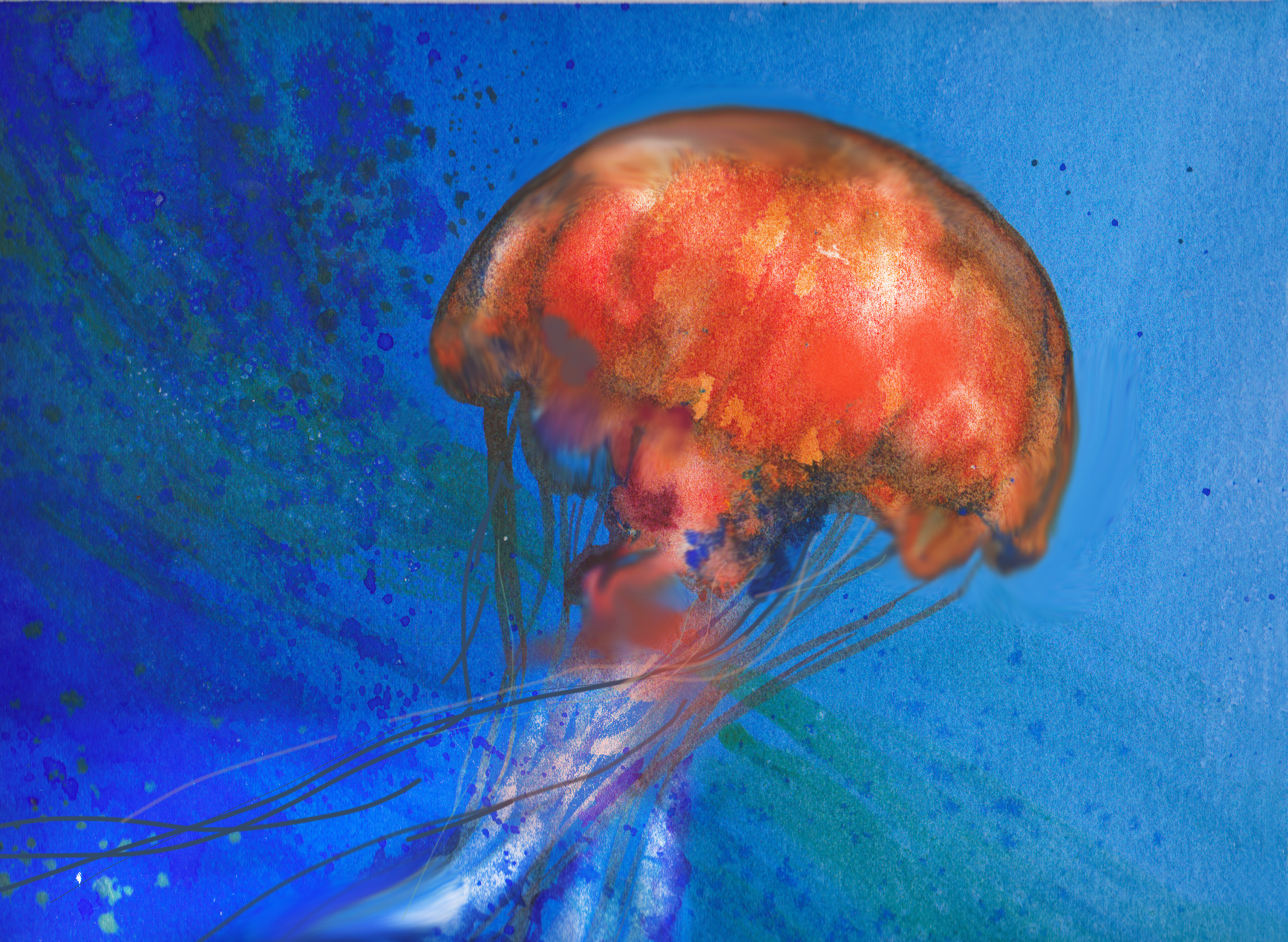 Jellyfish - Watercolour - 9 x 11