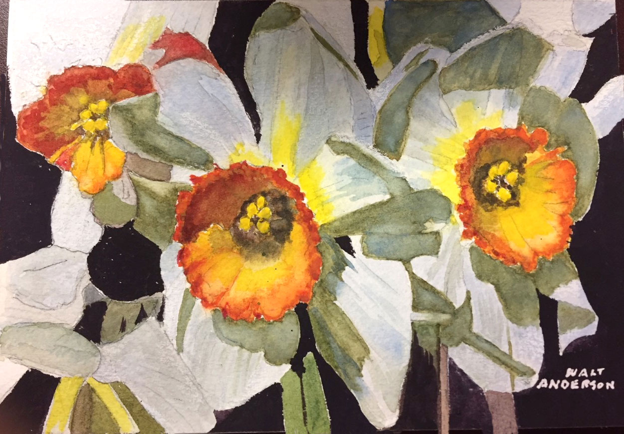 Daffodils- Anderson, Walter 8 x 6 in WC