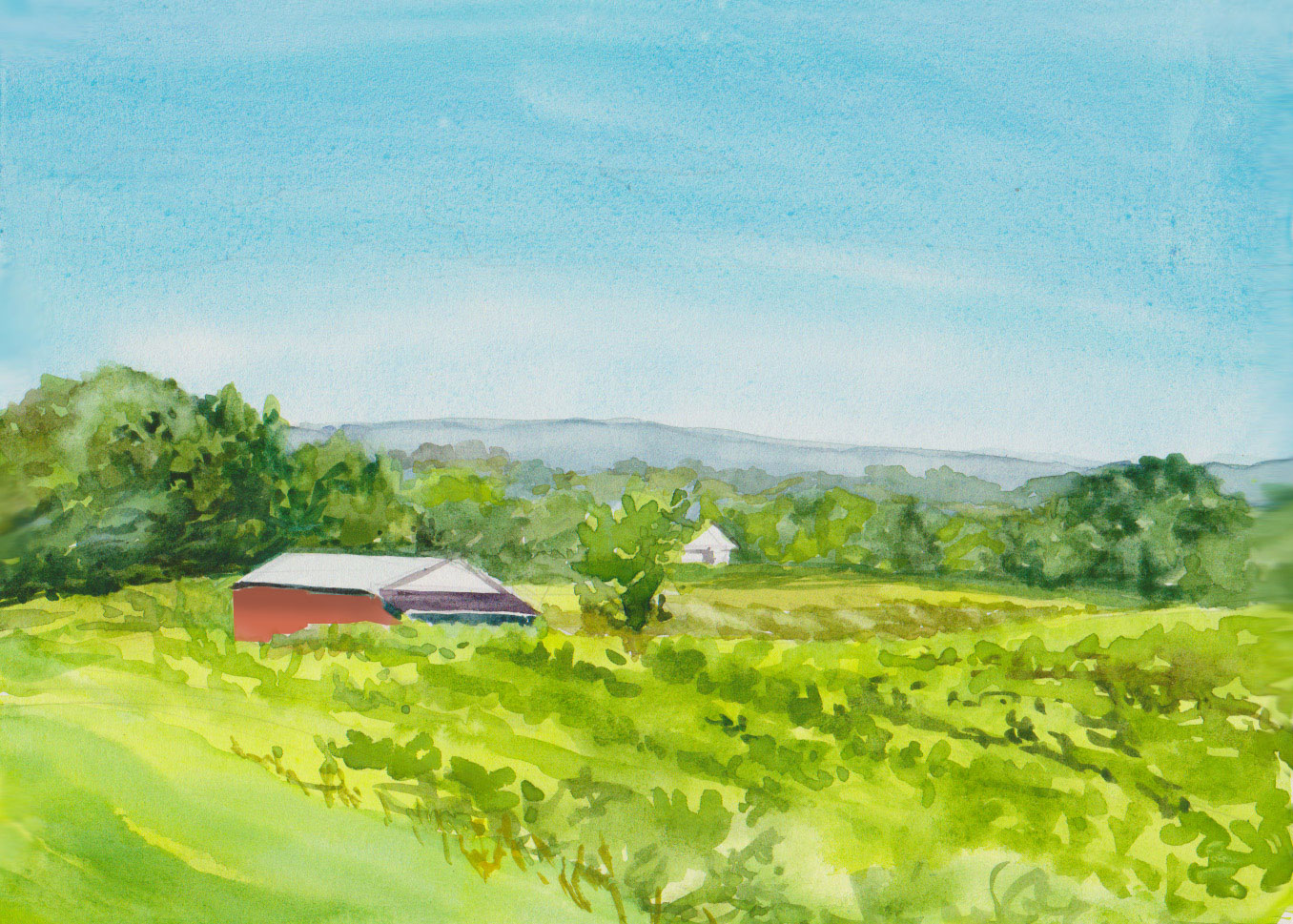 Tawse Winery 2 - Watercolour 9 x 6 - SOLD